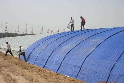 崂山区蔬菜大棚保温棉被加工及铺设